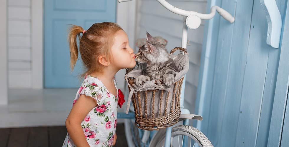 Niña pequeña en casa andaluza haciendo un nuevo amigo